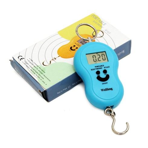 C芒n �i峄�n t峄� Portable mini c岷�m tay (50kg)