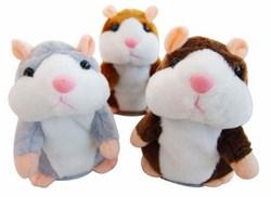 Chuột hamster biết nói