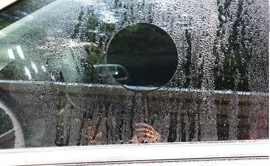 Combo 2 miếng dán chống nước kính xe