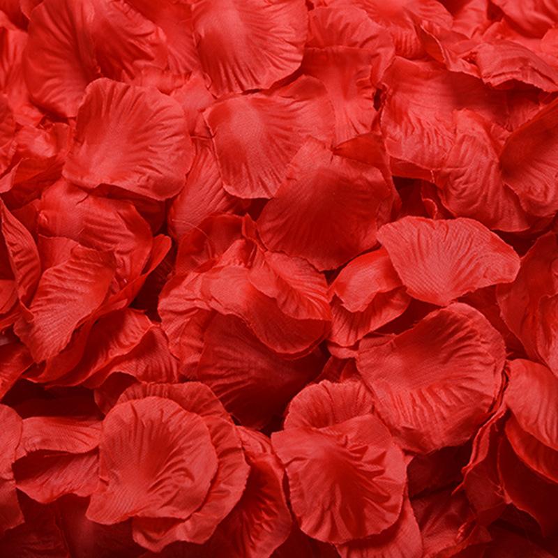 Combo 100 cánh hoa hồng